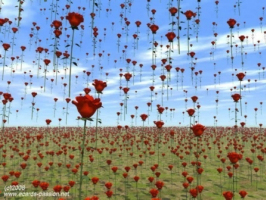 ploaie-de-trandafiri_1227951159bfb0