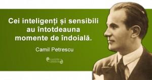 Citat-Camil-Petrescu.fw_-638x338