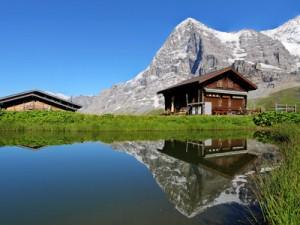 Alpii Bernezi, Elvetia