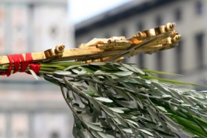 ce-nu-stiai-despre-duminica-floriilor-205664