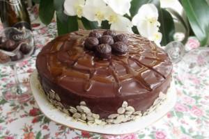 656x438_tort-cu-ciocolata-gem-de-caise-si-fulgi-de-migdale-412263
